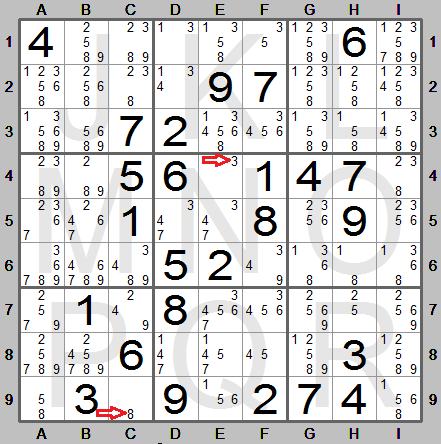 all candidate digits and squares with single candidates shown in sudoku  instructions program